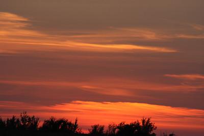 Evening, Nov. 28, 2012.