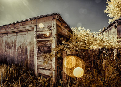 Infra Red Shed