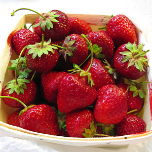 Early strawberries from Atlas Farm.