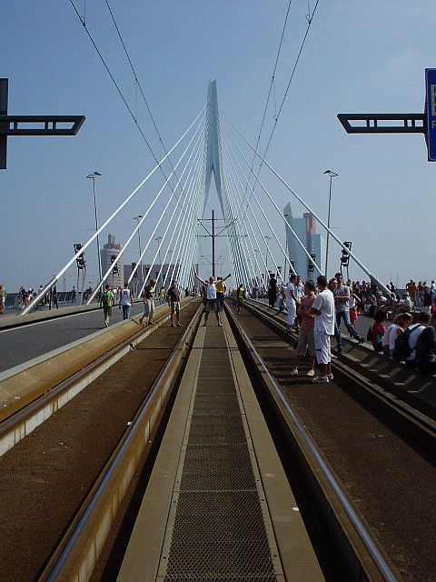 "Erasmus bridge aka ""The Swan"" in Rotterdam"