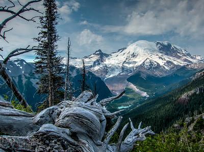 Mt Rainier from Sunrise