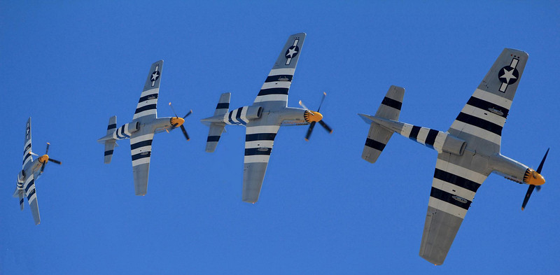 """Experts feel the P-51 Mustang with the Merlin engine is the greatest fighter plane ever made. Composite photo sequence of one P-51 in a low altitude diving turn. This is """"Little Horse"""", one of four P-51s that flew at Wings Over Houston , 2011."""