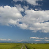 Gorgeous landscapes near Biei, Hokkaido.