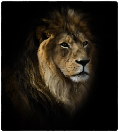 The King Denver Zoo