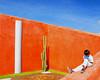 Mexico colours