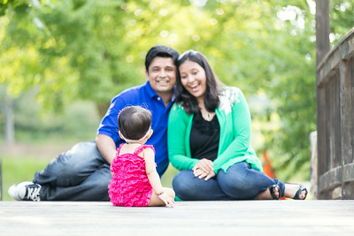 Nitin & Sheetal Family Pictures