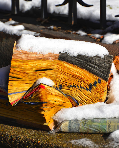soggy wet phonebooksPhone books in the snow