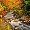 Fall Foliage, Oct. 2011