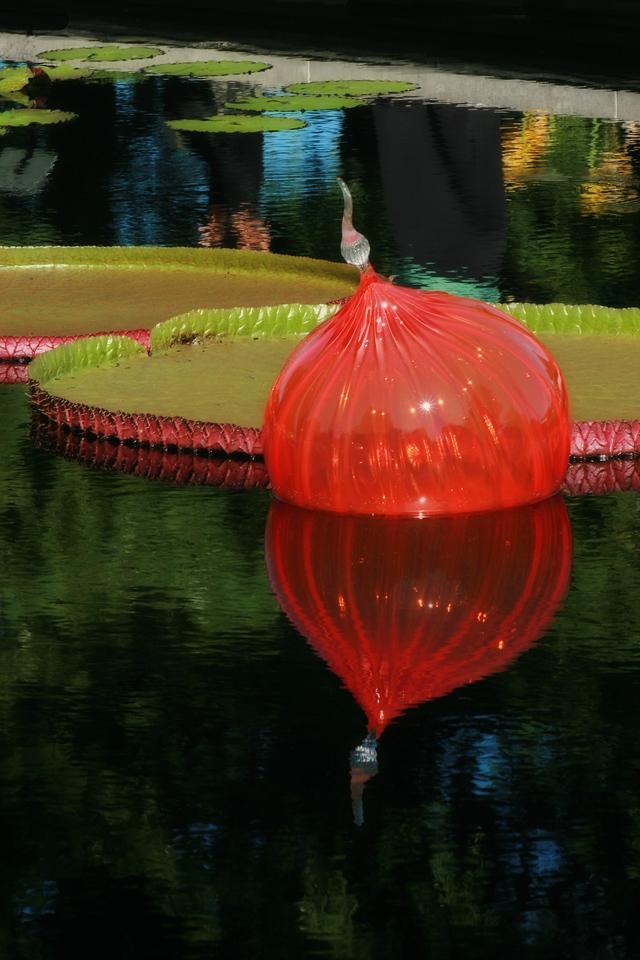 Glass balls IMG_7555