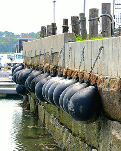 Bulbous Fenders All in a Row