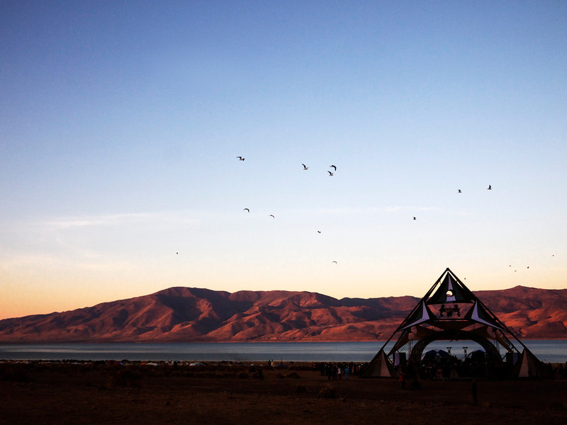 pyramid stage at dawn, the birds waking up (symbiosis)