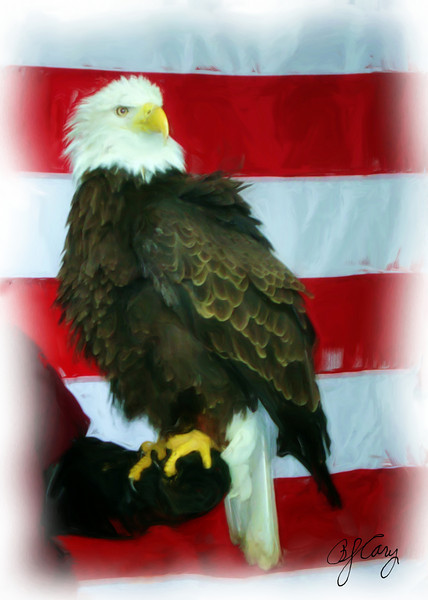 Eagle_flag_062_Painting
