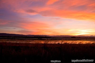Sunset, California Delta