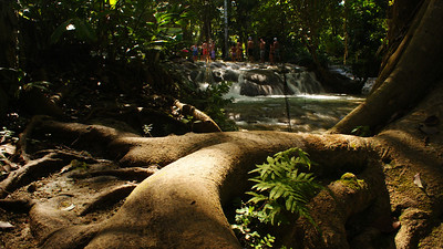The top section of Dunn's River Falls, Jamaica, Jan 2011.