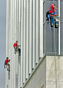 WILD ART - WINDOW WASHERS
