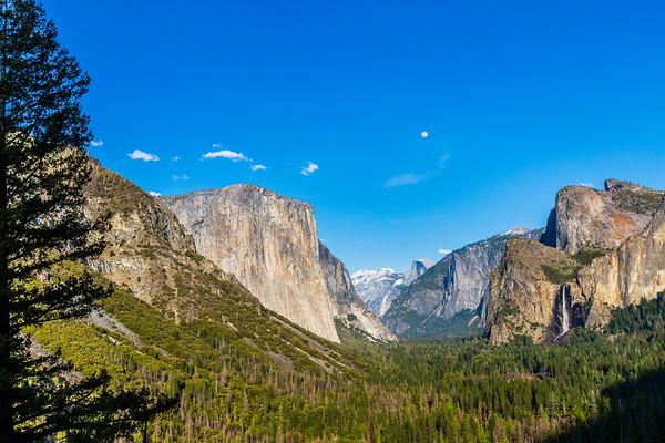 Yosemite March 2020-2