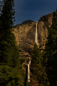 Yosemite March 2020-6