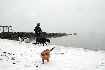 Debbie Banks-Skellenger of Avon Lake walks her dogs Little Bit, left, Casey and Foxey, as fog rolls in off the lake at Veterans Memorial Park in Avon Lake on Monday, Feb. 8.  STEVE MANHEIM/CHRONICLE