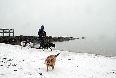 Debbie Banks-Skellenger of Avon Lake walks her dogs Little Bit, left, Casey and Foxey, as fog rolls in off the lake at Veterans Memorial Park in Avon Lake on Monday, Feb. 8.  STEVE MANHEIM/CHRONICLE