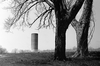 trees+silo-t0697