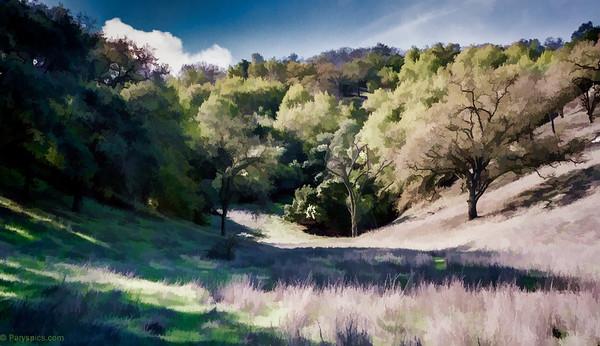 Calero creek county park