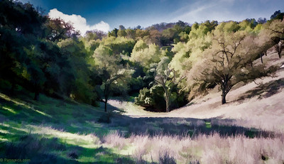 Calero creek county park