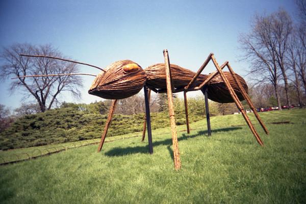 Camera: Vivitar Ultra Wide and Slim<br /> <br /> Big Bugs exhibit, Morton Arboretum