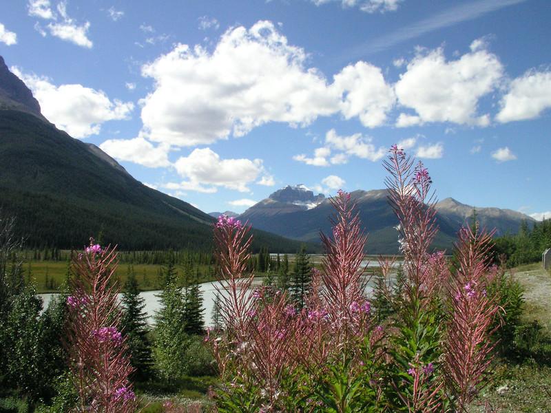 ORIGINAL: Jasper Canada