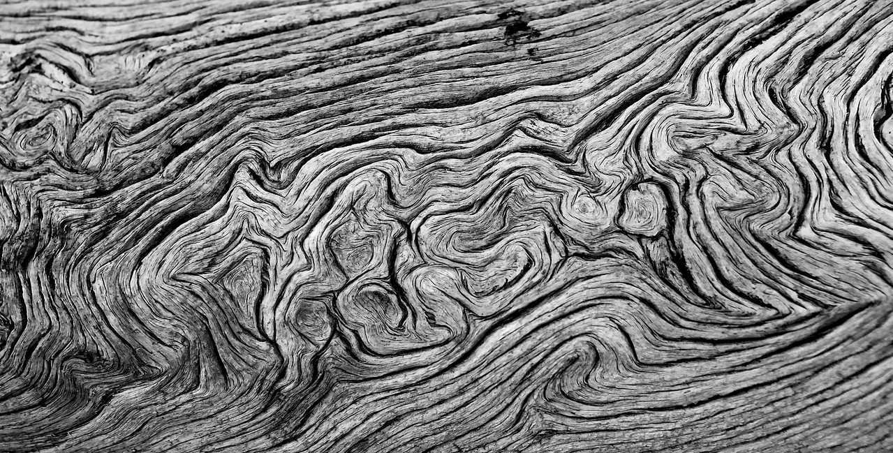 Bizarre Growth Patterns in Wood