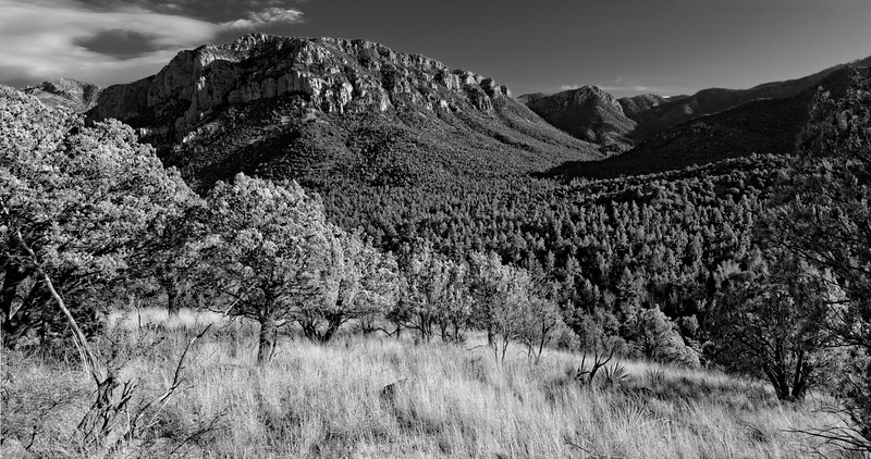 Afternoon Panorama,  Chiricahua Wilderness