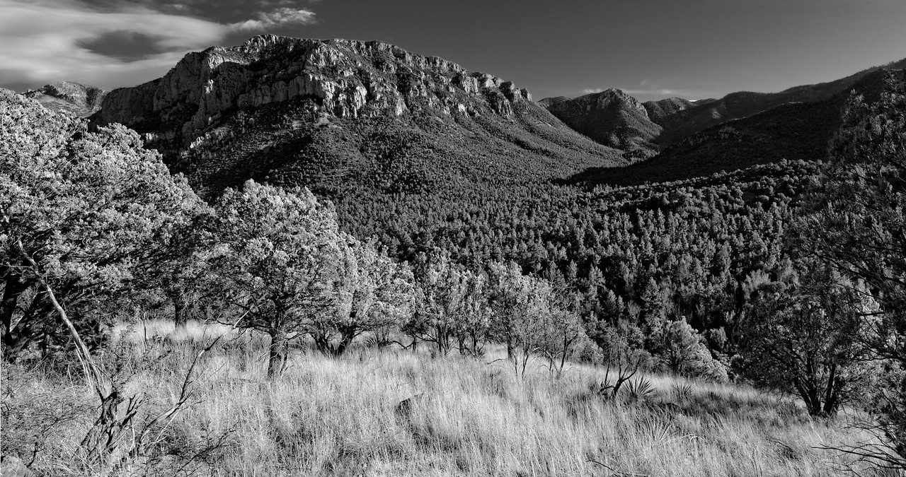 Afternoon Panorama - Chiricahua Wilderness, Arizona