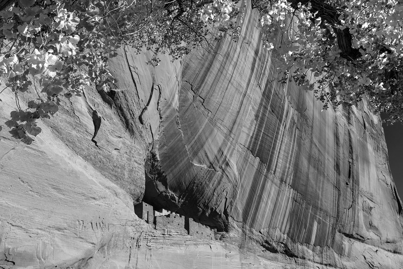 White House Ruin, Canyon de Chelly National Monument, AZ
