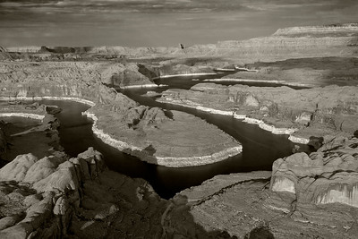 Lake Powell Gooseneck