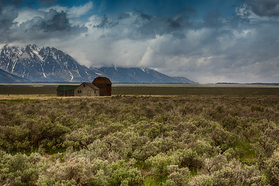 Landscapes:  The Homestead