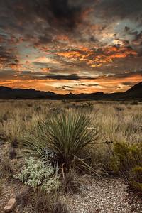 Copyright Thorpeland Photography