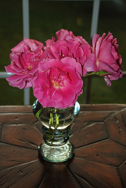 Vase of Apple Blossom Roses