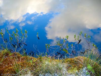 Summer Reflections - Lieksa, Finland