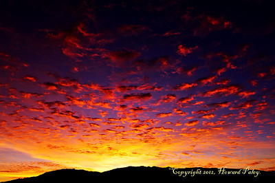 """Premonition"", Sunrise, Rincon Mts., Tucson, Arizona."