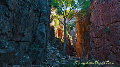 """Sheltered"", Hells Half-Acre, Aravaipa Wilderness."