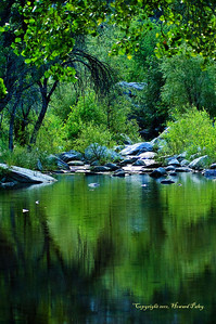 """Sabino"", Sabino Canyon, Tucson, Arizona."