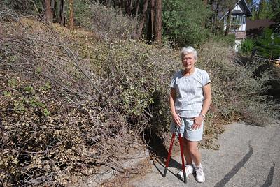 DSC_4306Lisa the shrub clipper