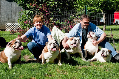 bulldog-family-1