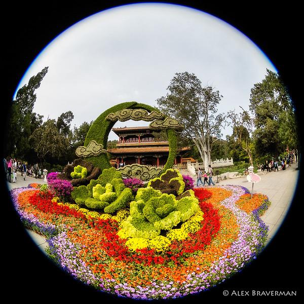 171001_china_2011
