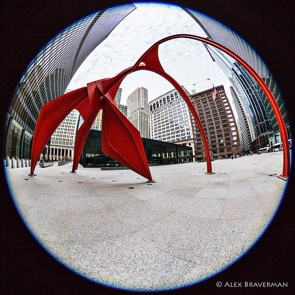 170402_chicago_1106