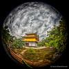 The Golden Temple: Kinkakujicho, Japan