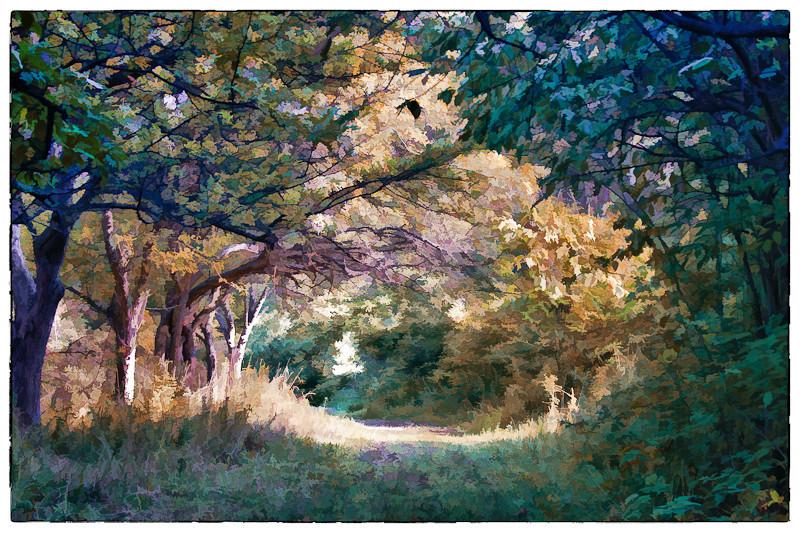 An impressionist view of the Wild Turkey Trail