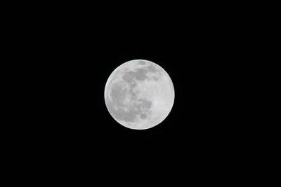 Austin's Moon