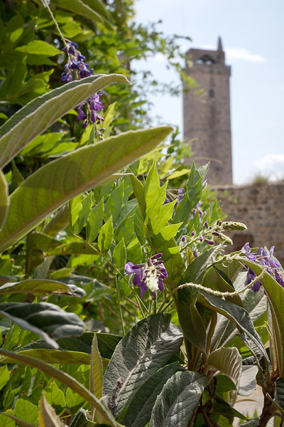 The Devil's Tower, one of the 14 remaining towers in San Gimignano