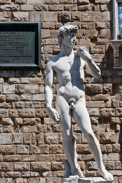 Copy of David (Michelangelo) in the Palazzo della Signoria in front of the Palazzo Vechio (city hall)