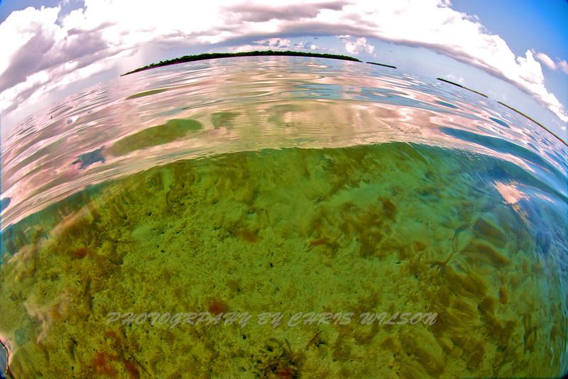 Florida Keys_07-26-12_0625